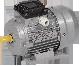 DRV056-B4-000-2-1510 | Электродвигатель 3ф. АИР 56B4 380В 0,18кВт 1500об/мин 1081 DRIVE ИЭК